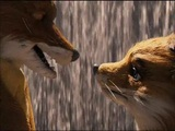 Fantastic Mr. Fox (Theatrical Trailer)