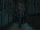 Harry Potter and the Deathly Hallows ? Part 2 (For Your Consideration ? Oscars 2011)